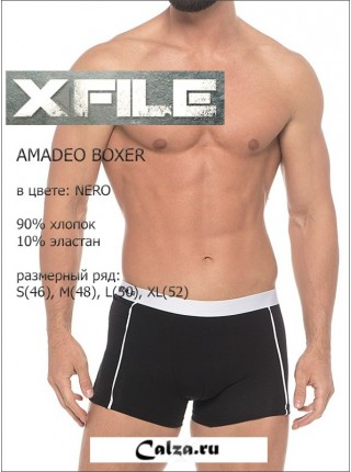 X FILE AMADEO BOXER