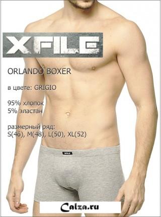 X FILE ORLANDO BOXER